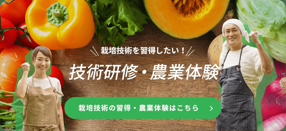 技術研修・農業体験